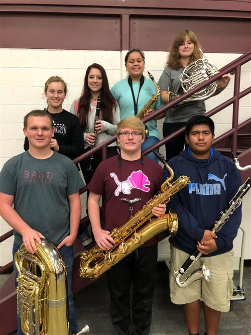 Area Concert Band 2017