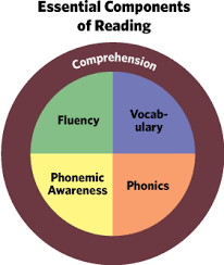 Essential Componoents of Reading Graphic